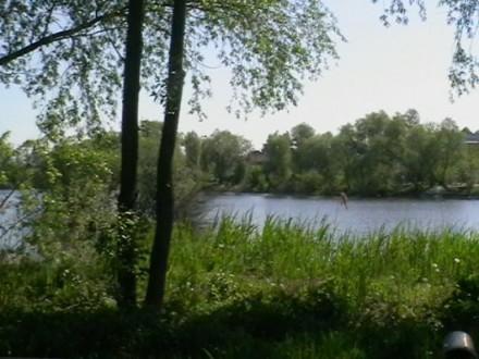 Продається земельна ділянка для с/г в Микуличах зі ставком вкінці.. Бородянка. фото 1