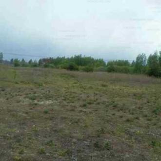 Продається земельна ділянка для с/г в Немішаєво.. Бородянка. фото 1