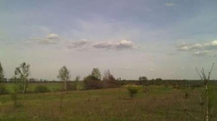 Продається земельна ділянка під будівництво в Микуличах Бородянського р-ну. Бородянка. фото 1