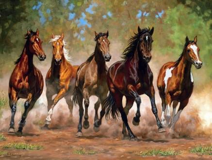 Аренда денников. Постой лошадей. Прокат лошадей. Чернигов. фото 1