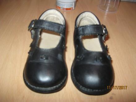 Продам кожаные итальянские темно-синие туфельки р.20. Чернігів. фото 1