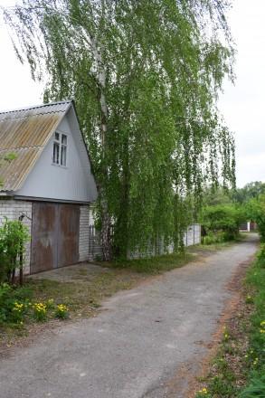 Продается дача рядом с Десной (300 м) с. Боромыки. Чернигов. фото 1