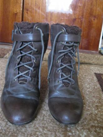 Зимние ботинки зимові ботинки. Полтава. фото 1