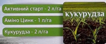 Схема Комплексного мікродобрива для кукурудзи. Киев. фото 1