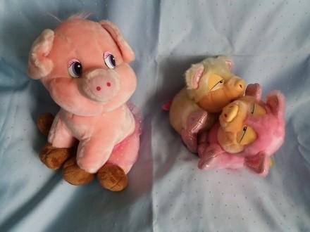 мягкие игрушки- свинки. Киев. фото 1