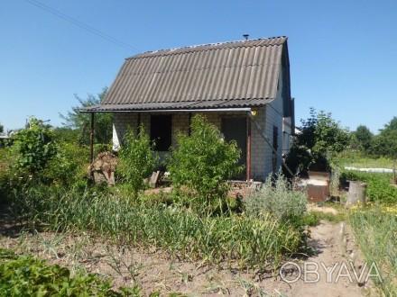 """Дачный участок за бывшим лагерем """"Смена"""", приблизительно 8-10-й дом от реки, зем. Чернигов, Черниговская область. фото 1"""