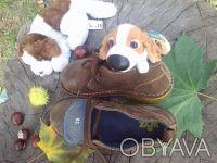 Ботинки натуральная замша шоколадного цвета'внутри--- полностью серая кожа'даже . Чернигов, Черниговская область. фото 6