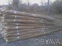 Продам Орешник(лещину) упакованная в пачки.. Чернигов. фото 1