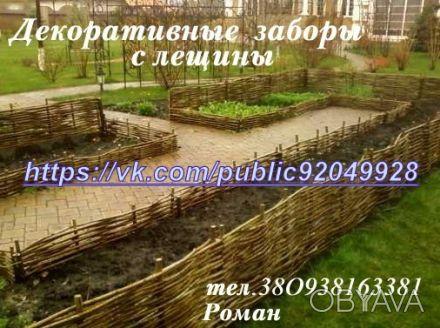Производим плетеный забор из лозы. Материал - лещина, орешник. Забор производим . Чернигов, Черниговская область. фото 1