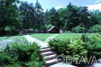 Коттедж расположен на живописном участке 15 соток с выходом в сосновый лес, рядо. Горенка, Киевская область. фото 6