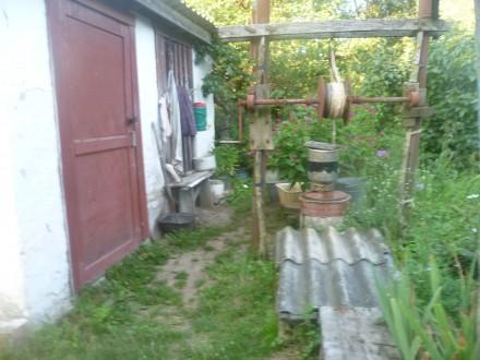 Дом с приватизированным земельным участком 15 сот. в селе Олишевка Черниговского. Чернигов, Черниговская область. фото 7
