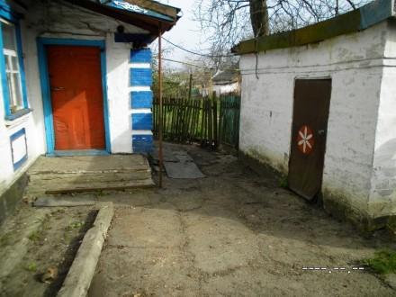 Продается дом. Александрия. фото 1