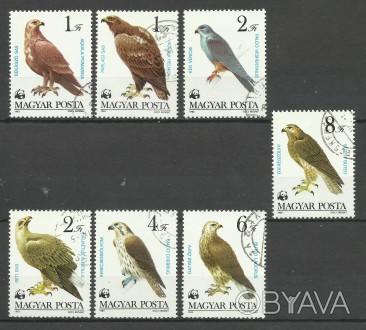 Продам марки Венгрии 7 шт (гашеные) 50 грн 1983 г Всемирный фонд дикой природы . Киев, Киевская область. фото 1