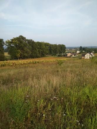 Продається земельна ділянка у с. Германівка. Обухов. фото 1