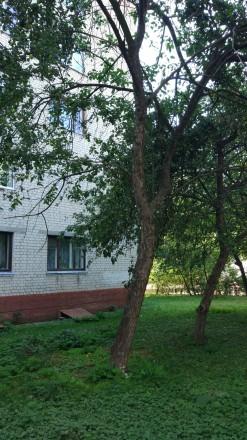 Отличное предложение для коммерческой деятельности по улице Доценко. Чернигов. фото 1
