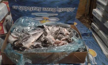 Рыба морская. Житомир. фото 1