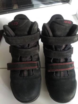 Ботинки зимние. Бровары. фото 1