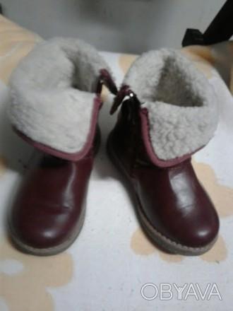 Зимние сапожки для девочки в отличном состояние. Почти как новые (на фото видно). Черновцы, Винницкая область. фото 1