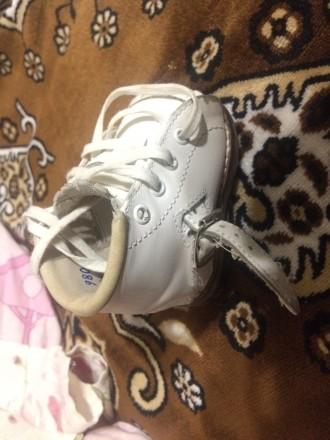 Продам брейсы, ботиночки американской марки Маркелл для лечения косолапости по м. Борисполь, Киевская область. фото 3