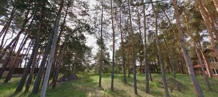Киево-Святошинский район, с. Ходосовка,есть участки в элитном районе, коттеджные. Ходосовка, Киевская область. фото 12