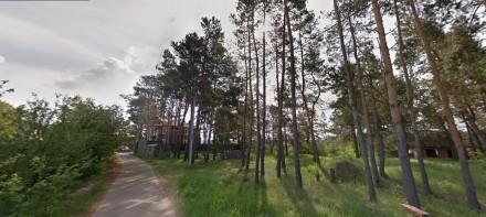 Киево-Святошинский район, с. Ходосовка,есть участки в элитном районе, коттеджные. Ходосовка, Киевская область. фото 13