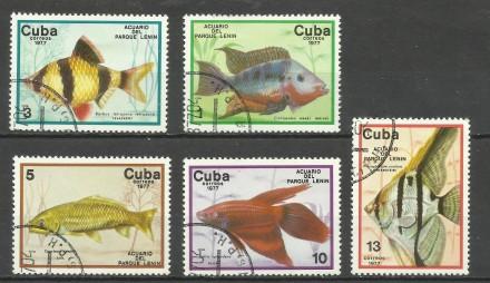 Продам  марки Кубы 8 шт. (гашеные)  два лота 20 грн.  можно отдельными лотами . Киев, Киевская область. фото 3