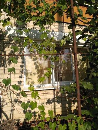 Продается коттедж в селе Раздольное.. Каховка. фото 1
