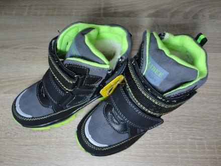 Детские зимние ботинки Clibee для мальчика (26-31). Николаев. фото 1