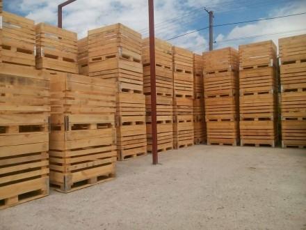 ящики дерев'яні для яблук,ящики деревянные для яблок. Львов. фото 1