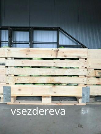 Виготовляємо дерев'яні ящики для зберігання яблук, капусти, картоплі. Ящики, ко. Львов, Львовская область. фото 3