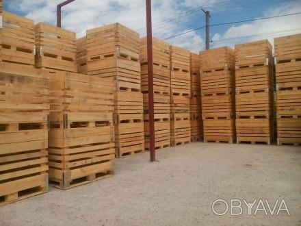 Виготовляємо дерев'яні ящики для зберігання яблук, капусти, картоплі. Ящики, ко. Львов, Львовская область. фото 1