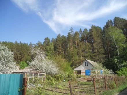 Продам дачу в черте города Старая Подусовка. Чернигов. фото 1
