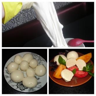 Закваски для сыра Италия. Легко, супервкусно и натурально. Рецепты. Сумы. фото 1