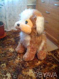 Большая мягкая собака, высота 70 см, состояние отличное, цена 150,0грн.. Одесса, Одесская область. фото 6