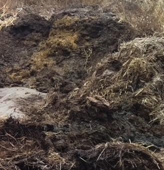Продаем и доставляем по Чернигову и городу. Навоз коровий, перегной лежалый, зем. Чернигов, Черниговская область. фото 3