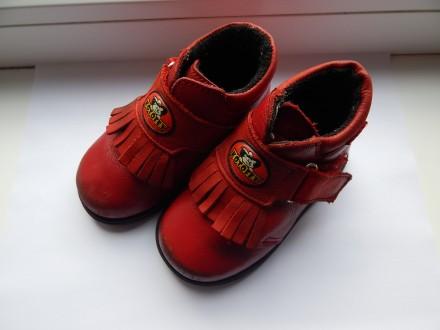 Детские осенние кожаные ботиночки котофей , размер 21 , утепленные, ботинки. Чернигов. фото 1