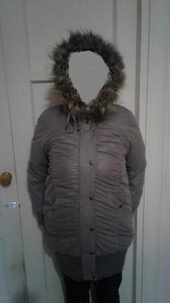 Удлиненная куртка на синтепоне серого цвета. Киев. фото 1