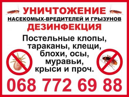 уничтожение тараканов и клопов. Кременчуг. фото 1