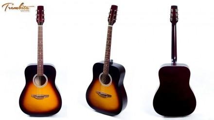Гитары Трембита + Подарки - Акустика - Классика Trembita Еagle.  Наша группа в. Апостоловo, Днепропетровская область. фото 2