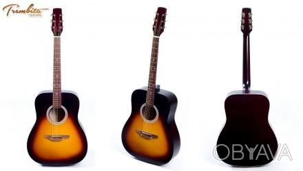 Гитары Трембита + Подарки - Акустика - Классика Trembita Еagle.  Наша группа в. Апостоловo, Днепропетровская область. фото 1