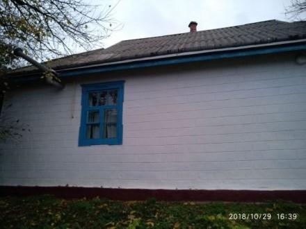 Продам дом,с.Щербашинцы. Богуслав. фото 1