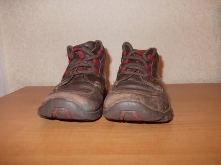 Демисезонные ботинки коричневого цвета (имеются вставки красного цвета) на шнурк. Днепр, Днепропетровская область. фото 3