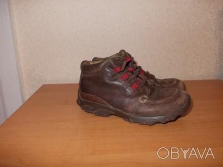 Демисезонные ботинки коричневого цвета (имеются вставки красного цвета) на шнурк. Днепр, Днепропетровская область. фото 1