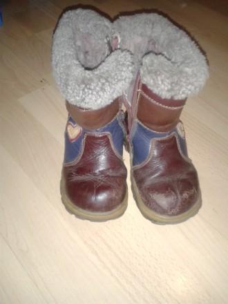 Зимние кожаные, натуральные сапожки. Сумы. фото 1