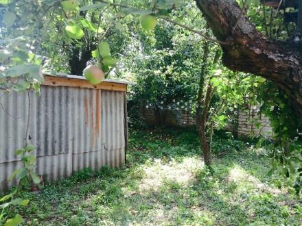 Продам отдельно стоящий дом в Киенке ул. Набережная. На маршрутке (135 или 3) 2. Чернигов, Черниговская область. фото 9