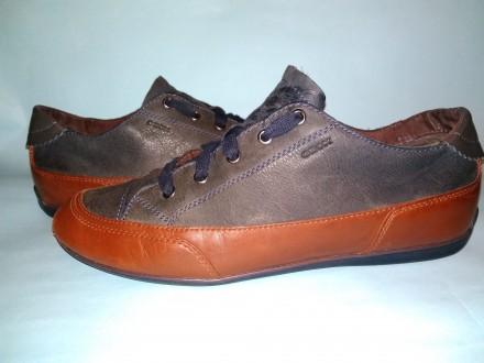 65063b53f Обувь Geox – купить обувь на доске объявлений OBYAVA.ua