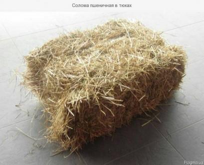 Доставка пшеничной соломы по Запорожью.. Запорожье. фото 1