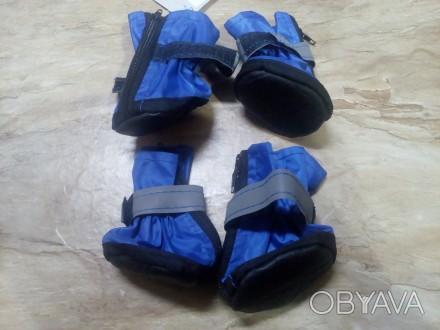 стильные синие ботиночки на среднюю собачку размер 1,5 фирма ЛАРИ производство У. Николаев, Николаевская область. фото 1