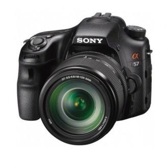 SONY Alpha A57 18-135. Мироновка. фото 1