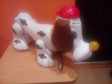 Собачка Chicco, (лает, двигает лапами). Хор. сост. Ц=160грн.. Бердичев. фото 1